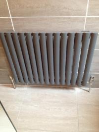 Toilet radiator